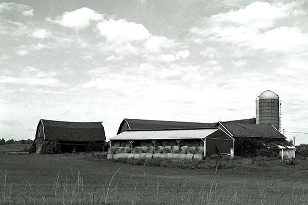 Norton Road Barn