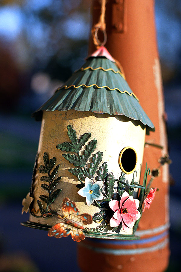 Metal Bird House