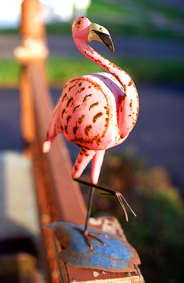 Metal Pink Flamingo