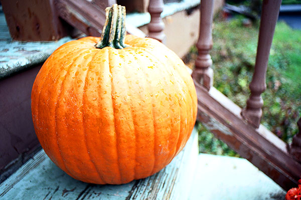 Pumpkin on the Porch