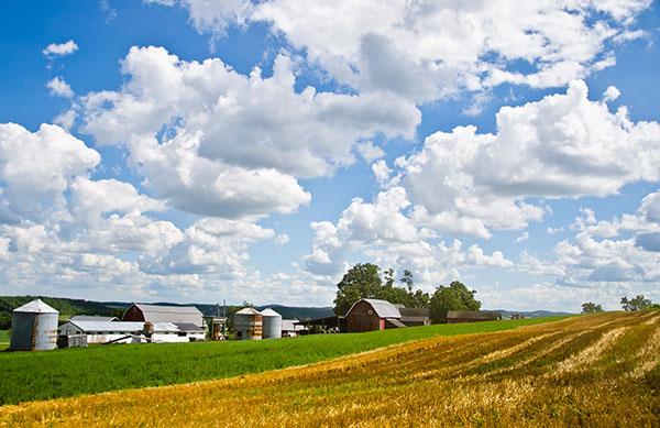 Starr Farm