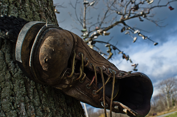 Shoe Trees, Foss and Lakeshore roads, Lyndonville